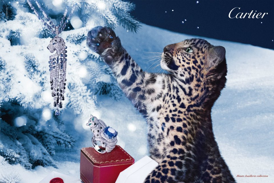 cartier_advertisement_2012
